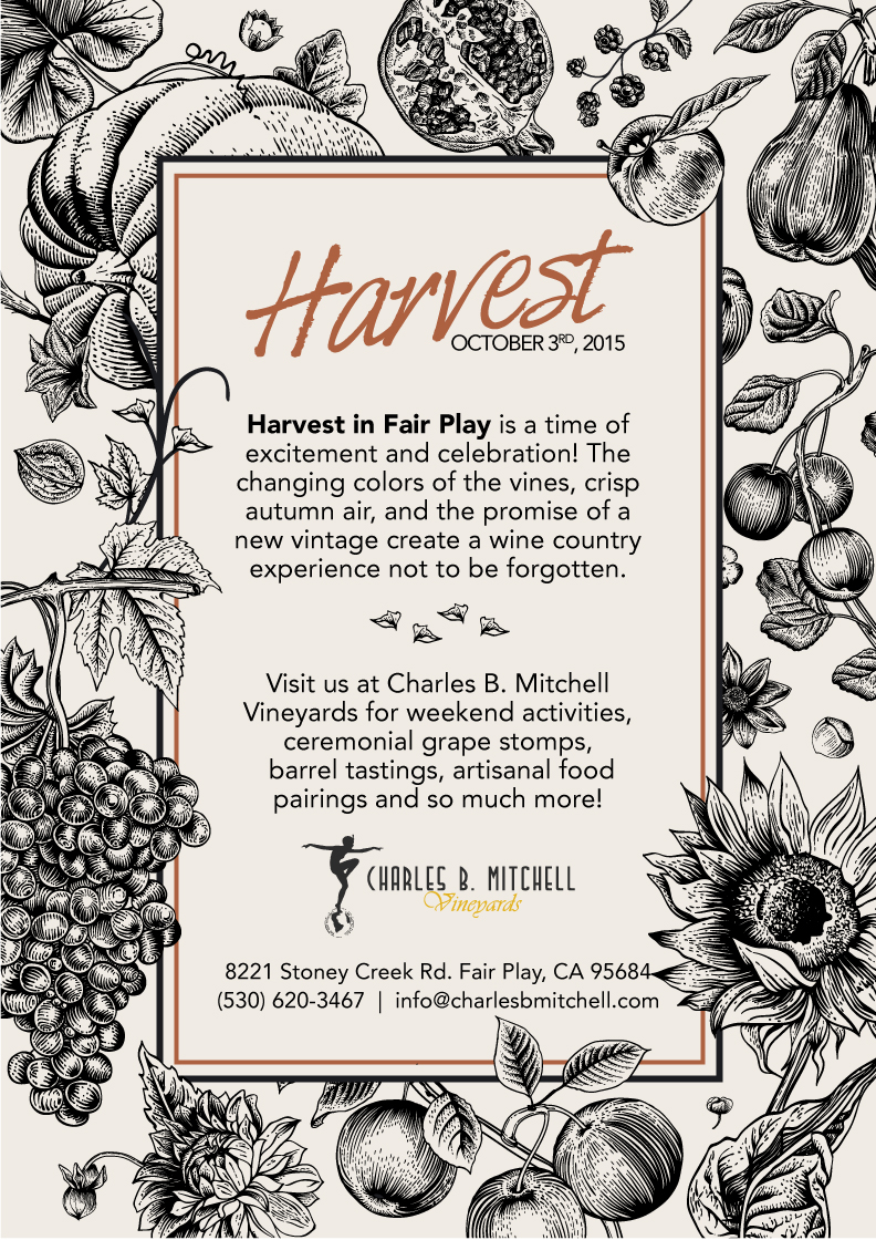 Harvest-Feast-FlyerRevised